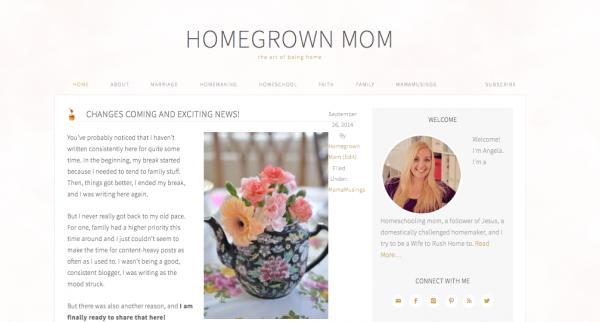 HG Mom screenshot